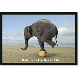 life, exercise and diet balance